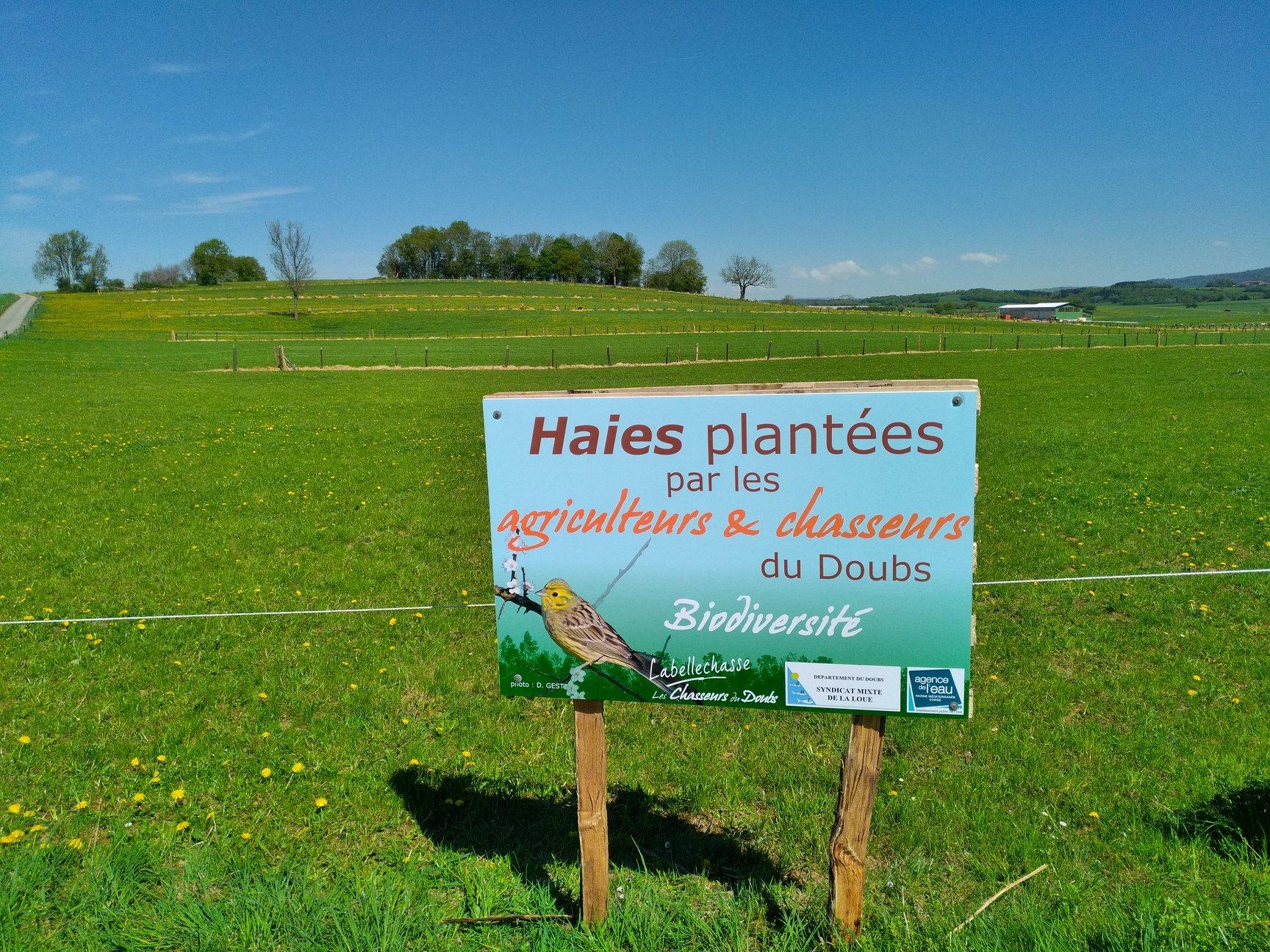 Panneau plantation Amancey
