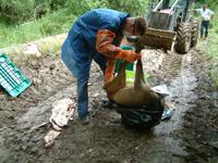 Prélèvement d'un chevreuil à Arc Sous Cicon