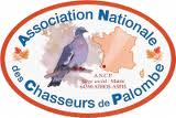 logo ANCP